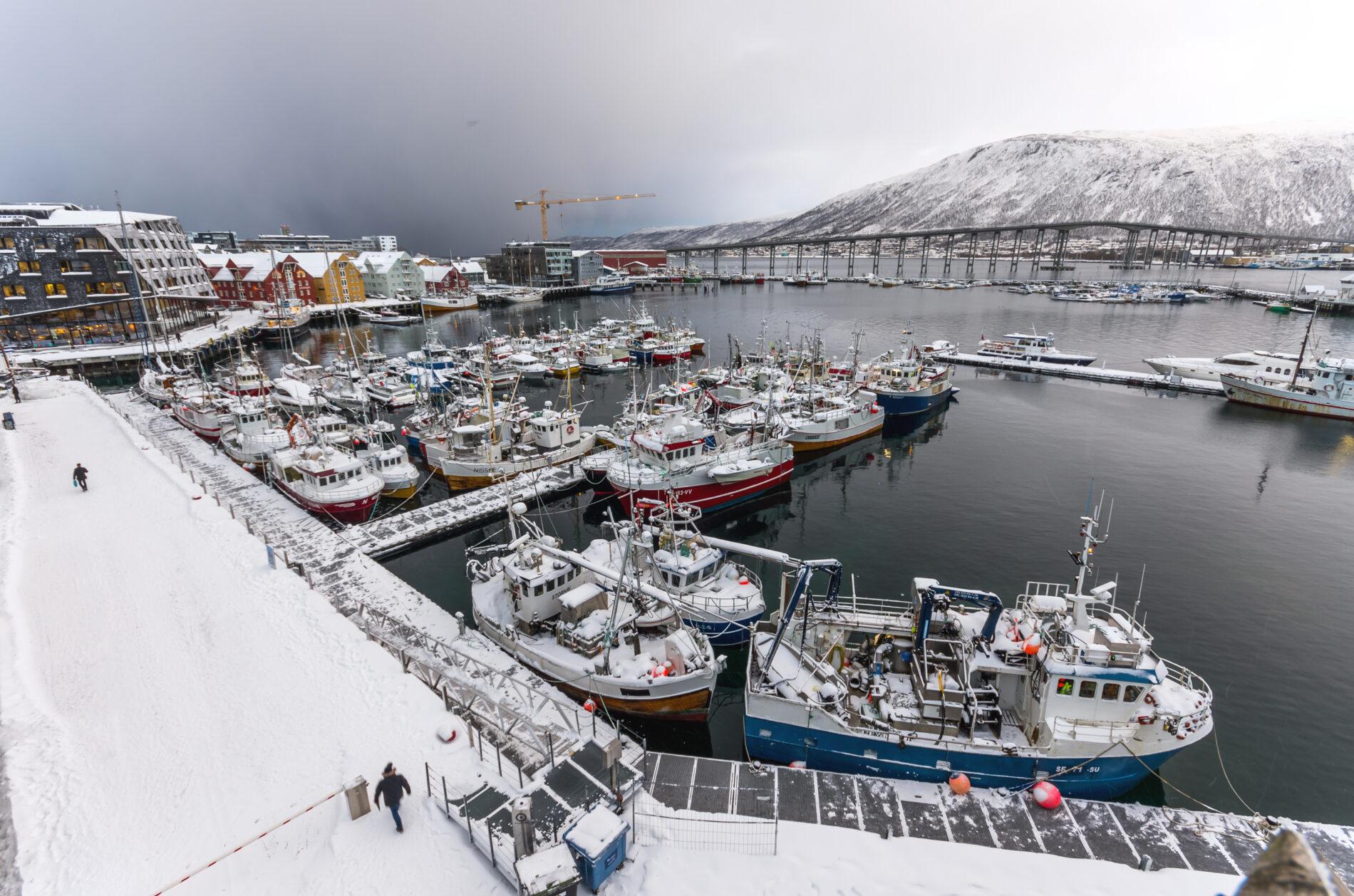 Fullti Tromsøhavn Bo Eide