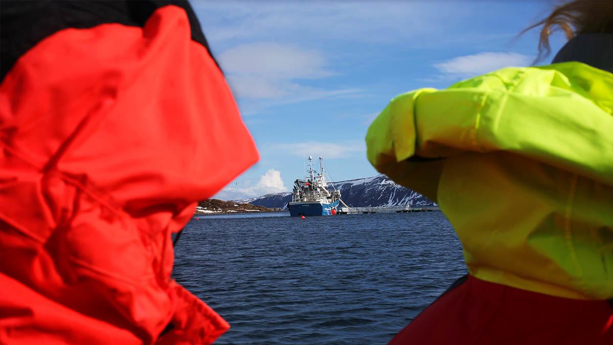 Fisk-kvinner-nord-norge-7