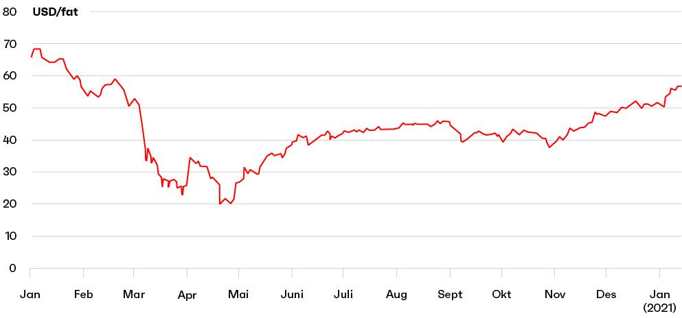 Kbnn2021 graf3